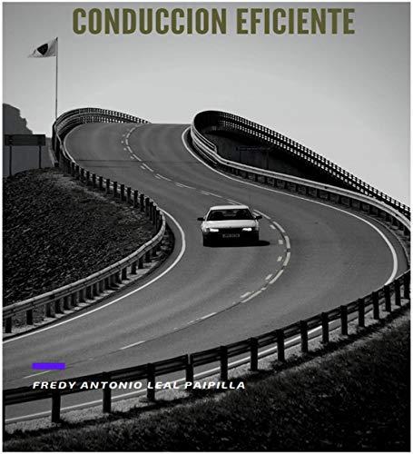 CARTILLA DE CONDUCCION EFICIENTE: SEGURIDAD VIAL (Spanish Edition)