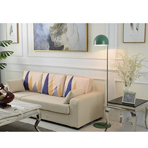 Lámpara de pie Lámpara de pie nórdica, lámpara de metal con estilo Lámpara de pie de dormitorio, 160 cm * D32cm lámpara de lectura (Color : Green)