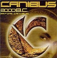 B.C.2000
