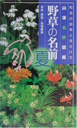 野草の名前 夏―和名の由来と見分けかた (山渓名前図鑑)の詳細を見る