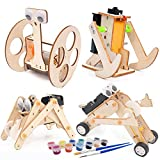DEUXPER Wooden Robots Models Building Kits for Kids and, Teens or Adults   Educational STEM Learning Science Craft Toys for Boys or Girls Age 7-14 (Robot 4 Kits)