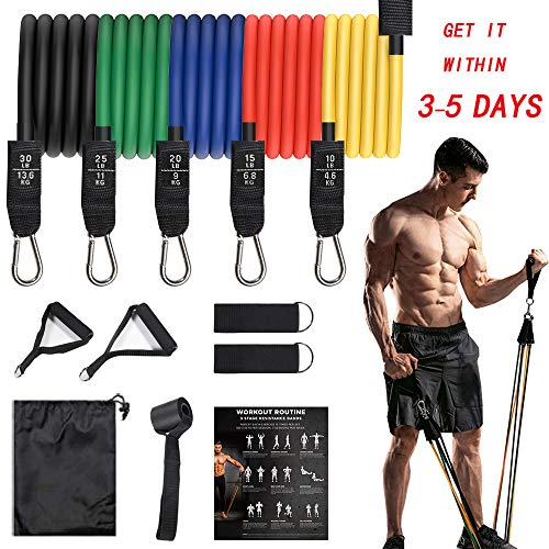 LUXSURE Resistance Bands with Handles Pull Up Exercise Band Set for Men or Women,12 pcs...