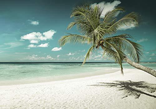 Forwall Fototapete Vlies Wanddeko Strand Meer - Sand Sommer Palmen Sonne Vliestapete Wand Tapete Moderne Wohnzimmer Schlafzimmer Wanddekoration 13346VEXXL 312cm x 219cm
