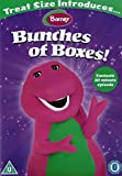 Treat Size Introduces Barney Bunches of Boxes! DVD