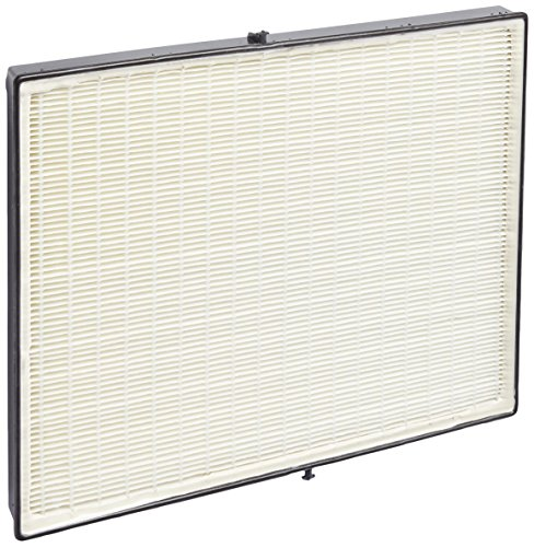 nutone  hepa Filter only - Broan ACCGSFH