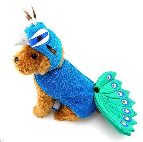 Pegasus chiot paon Chapeau Costume pour Petit Garçon Fille pour chien/chat de moins de 20 kg bleu