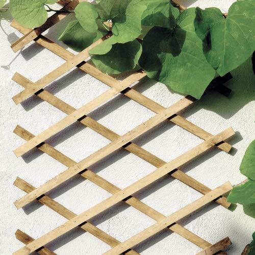 bellissa Scherengitter ausziehbar - Rankgitter Holz-Spalier oder Scherenspalier Rankhilfe im Garten Natur 270x45 cm
