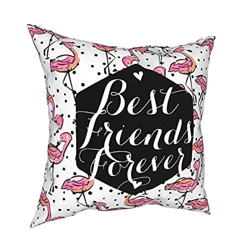 Reebos Fundas de almohada, diseño de flamenco rosa, para sofá, sala de estar, cama, 45,7 x 45,7 cm