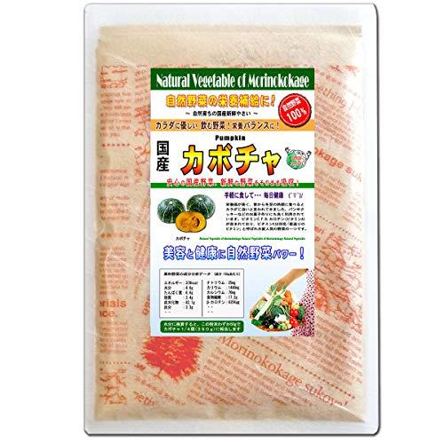 森のこかげ かぼちゃ 国産 野菜 粉末 パウダー 100g 売筋粉