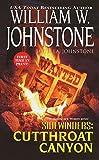 Cutthroat Canyon (Sidewinders Book 3)