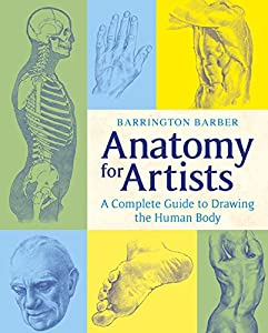 Product Description Anatomy For Artists Is A Concise User Friendly Book That Tackles The Specific Challenges Faced By