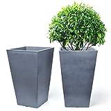 PurePino Tree Planter Set