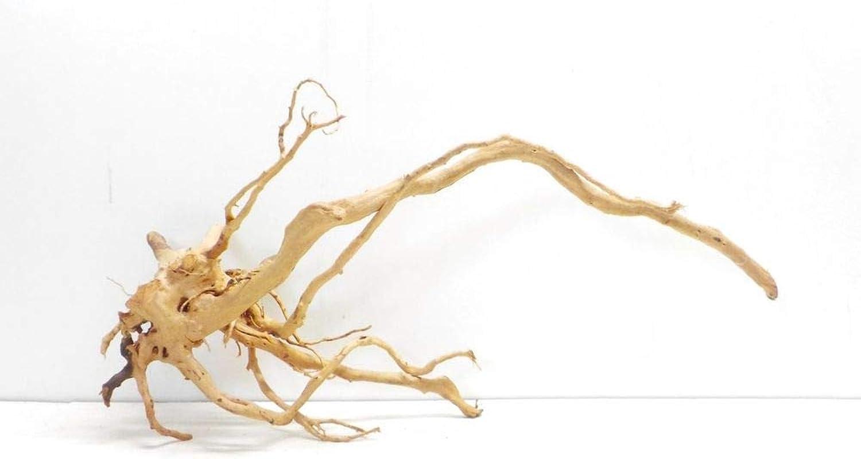 AQUARISTIKWELT24 No. 7305 Aquarium Root 83 x 35 x 45 cm XXXL Wood Decoration