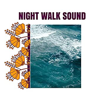 Night Walk Sound