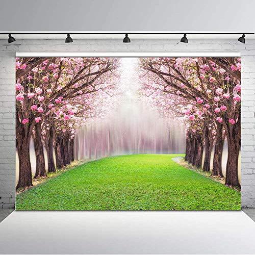 Pared de Fondo Primavera Flor Bosque Verde Prado Misty Wonderland Studio Fondo Fotografía de Fondo Telón de Fondo de Foto de Vinilo Telón de Fondo telón de Fondo Fiesta Infantil de Telón de