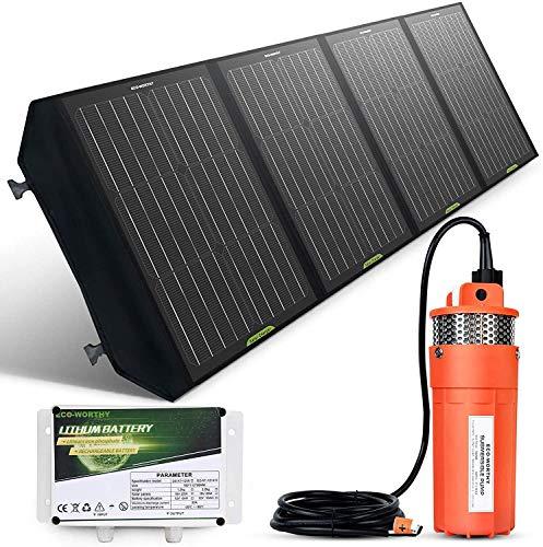 DCHOUSE Kit De Bomba De Agua Solar De 120 W Con Panel Solar De Alta Eficiencia, Batería De Litio De 6 Ah Lifepo4, Bomba Solar Sumergible De 12 V, Cable Solar De 16 Pies, Para Ganado, Riego