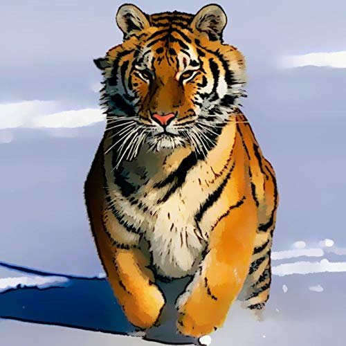 DIY Paint by Diamond Kits for Adults, Kids, Home Room Office Decoration. Gift Presents for Her Him Tiger-Snow Run 11.8x11.8 in by Greatminer
