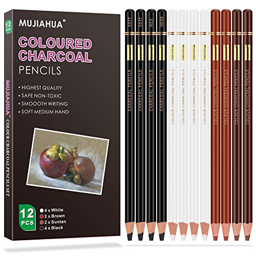 MUJINHUA Professional Colour Charcoal Pencils Drawing Set of 12, Art Supplies Sketch White Pencils for Drawing Art, Sketching, Shading, Blending, for Beginners & Pro Artists