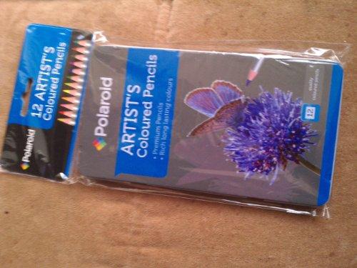 Daler Rowney - 646200012 - Kit De Loisirs Créatifs - 12 Crayons De Couleur Simply