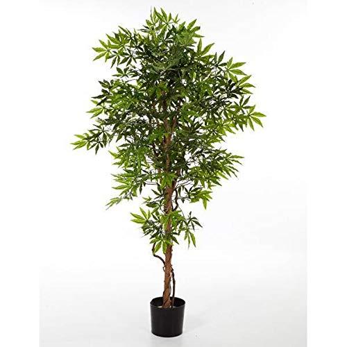 artplants.de Japanischer Kunst Ahorn,...
