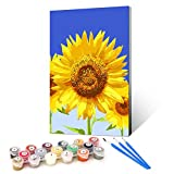 Ginkko Paint by Numbers for Adults Kids Beginners with Wooden Frame Easy Acrylic on Canvas 9x12 inch with Paints and Brushes, Blue Sky Sunflower, Gift Package(Include Framed)