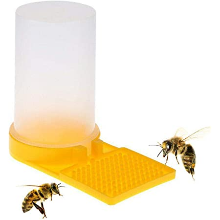 Bee Water Feeder Beehive Beekeeping Drinking Equipment Water Dispenser Beehive