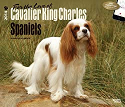 For the Love of Cavalier King Charles Spaniels 2014 Calendar, 18-Month Calendar[Browntrout Publishers][Amazon]