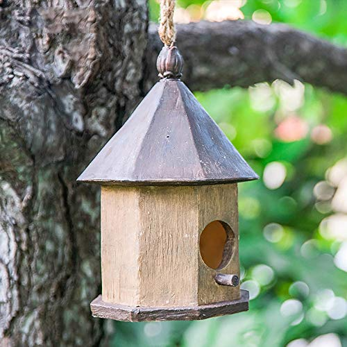 Birdhouse Hanging Outdoor Rustic Bird House for Small Bird Cabin Birdhouse Outdoor Decoration Bird House Garden Ornament (Color : D, Size : Free size)
