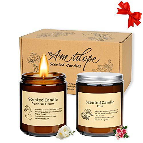 Scented Candles, Amtilope Long Lasting Aromatherapy Glass Jar Candles 2 Pack, Birthday Gifts for Women, Glass Jar Soy Candles for Home Scented, Gift Box for Birthday and House Decorate, 7.0 Oz Each