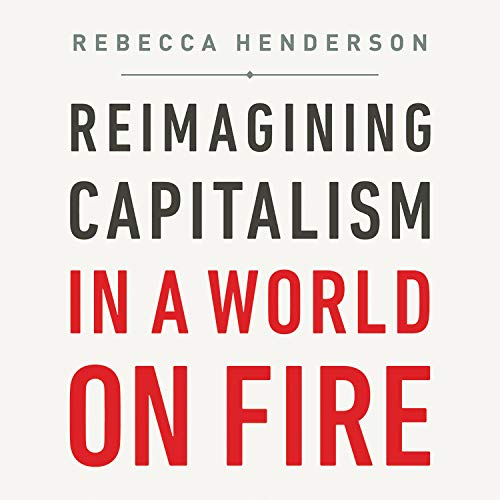 Reimagining Capitalism in a World on Fire Titelbild