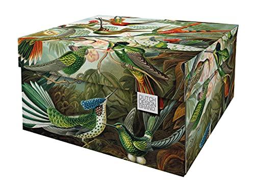 Dutch Design Brand Dekorative Aufbewahrungsboxen mit Deckel – Größe: 38,9 x 31,8 x 21,1 cm – FSC zertifizierter recycelbarer Karton (Druck: Kunst der Natur)