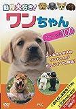 動物大好き! ワンちゃんスペシャル100[DVD]
