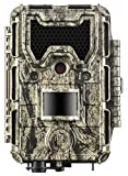 Bushnell 119877C Jumelles Camera 24 Mp Noir