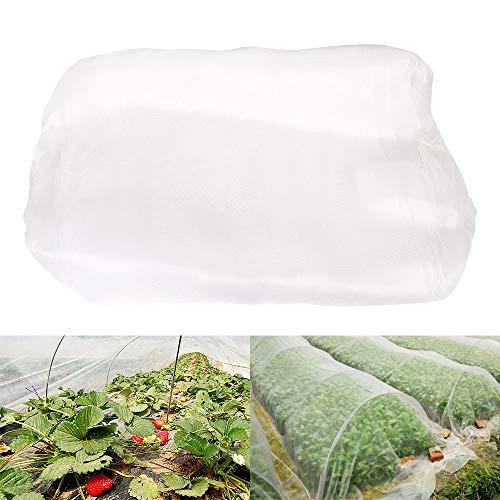 camouflage net Red de protección contra insectos para jardín, para plantas, flores, verduras, red de jardín, protección contra insectos, moscas, fileteado fino transparente (2,5 x 10 m)