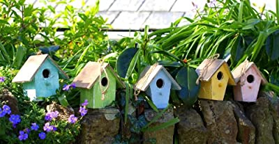 Bird Box - Bird House Nest Box Decorative Item for Kitchen or Garden in Five Colours, Apple Green, Sky Blue, Jade, Pink & Yellow - (Set of 5) from