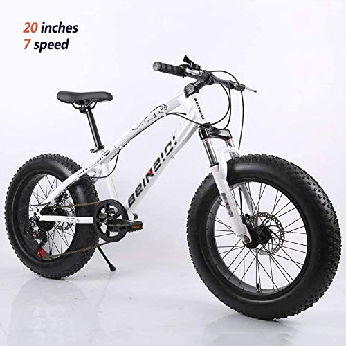 TRGCJGH Mountain Bikes with Dual Disc Brake for Adults,All Terrain Anti-Slip Fat Tire Mountain Bicycle, High-Carbon Steel Mountain Trail Bike,C-26inch