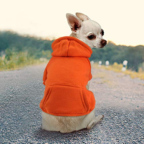 Idepet Haustier Kleidung Hundepullover Hunde Kleider welpen Pullover Hunde Warmer Mantel für Katzen Kleine Hunde Chihuahua Welpe Teddy Pudel (XL, Orange)