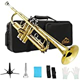 EASTROCK Bb Trumpet Gold Brass Standard Instrument with Carrying Case,Trumpet Stand,Gloves, 7C Mouthpiece for Student Beginner