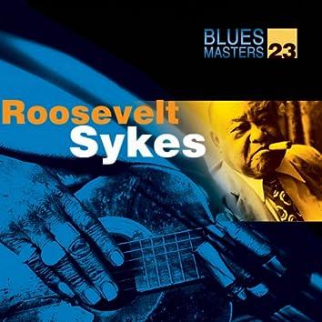 Blues Masters Vol. 22