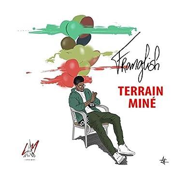 Terrain Miné