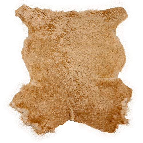 Glacier Wear True Camel Shearling Sheepskin Leather Hide Fur Pelt Skin (Buy 4 Get 1-6 sq ft)