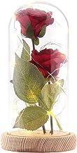 Rose sztuczny jedwab Sparkle Rose ze szkłem abażur 20 diod LED, duży prezent na Walentynki, Dzień Matki, Boże Narodzenie, ...