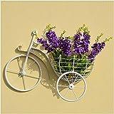 Maceta Exquisito Colgante Florero, Soportes de plantas de la planta con soporte de la flor de la pared Forma de la bicicleta de la bicicleta Flower Pantalla de la sala de estar Balcón de la pared Colg