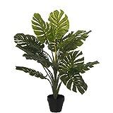 DRW Set de 4 Plantas Artificiales de la Costilla de Adán en Verde 70cm