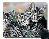Alfombrilla de ratón Divertido Personalizado, Gato Sombrero Ojos borrosa 67156 Alfombrillas de ratón con Bordes cosidos