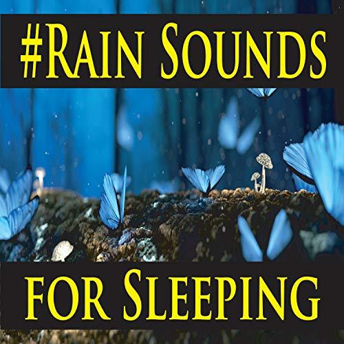 Huge Raindrops Striking the Metal Carport (White Noise for Sleeping)