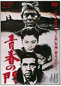 青春の門(1981)