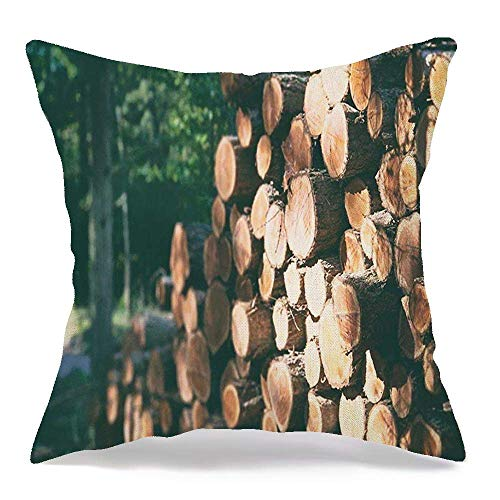 Throw Pillow Covers Case Nature Wooden Logs Trunk Forest Industrial Parks Woodland Outdoors Flora Natural Outdoor Wall Sun 18 x 18 Inch