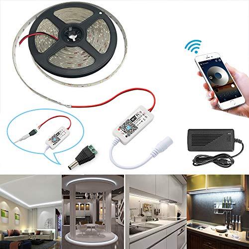 WIFI Striscia LED 5m impermeabile dimmerabile IP 65 Striscia luminosa 300 LED, kit striscia luminosa 2835 SMD striscia luminosa compatibile con Alexa, 6000K bianco freddo