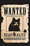 Wanted Dead and Alive Schrodingers Cat Funny Humor Cool Wall Decor Art Print Poster 12x18